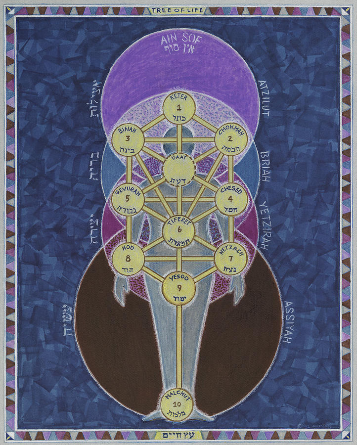 Tree of Life by Dani Antman