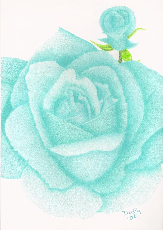 Rose Drawing - Turquoise Jewel by Dusty Reed