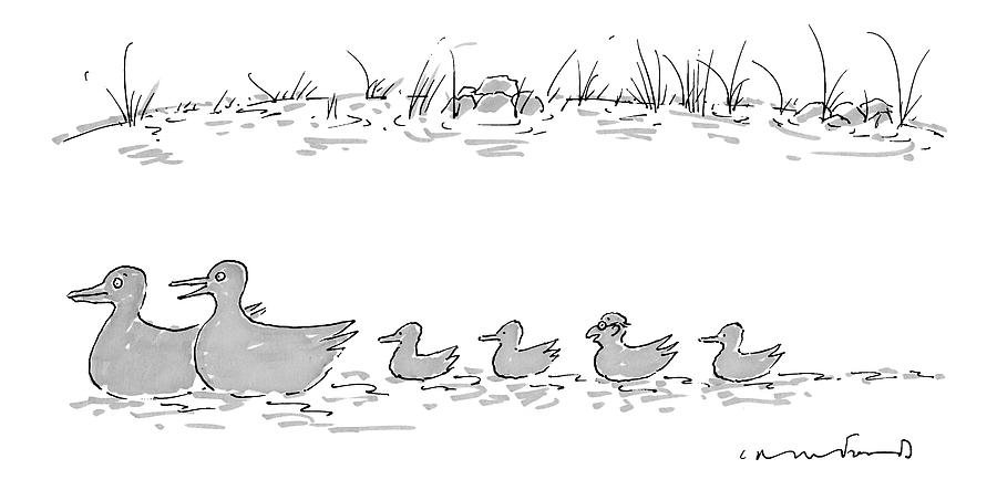 Two Ducks Lead A Line Of Four Ducklings Drawing by Michael Crawford