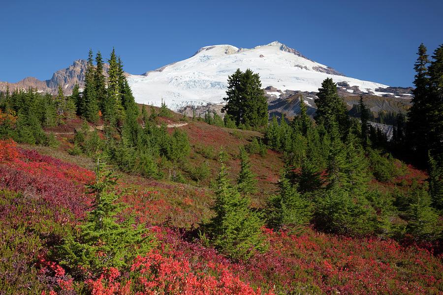 Alpine Photograph - Usa, Washington State, Mount Baker by Jamie and Judy Wild