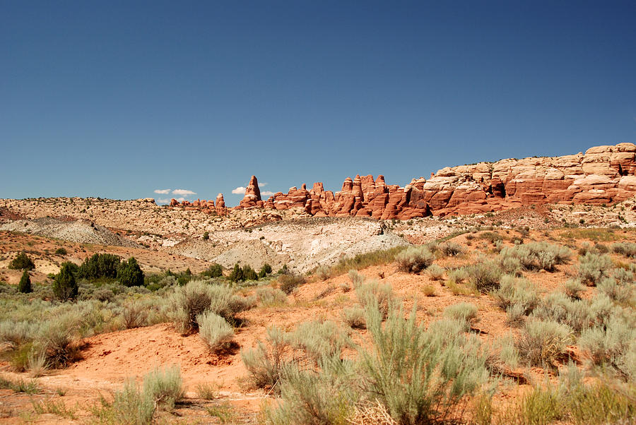 Arches National Park Photograph - Utah Landscape 3 by Tracy Winter