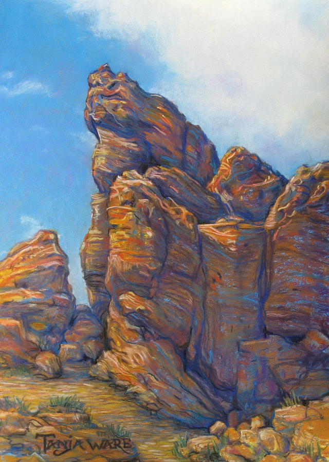Landscape Painting - Valley Of Fire by Tanja Ware