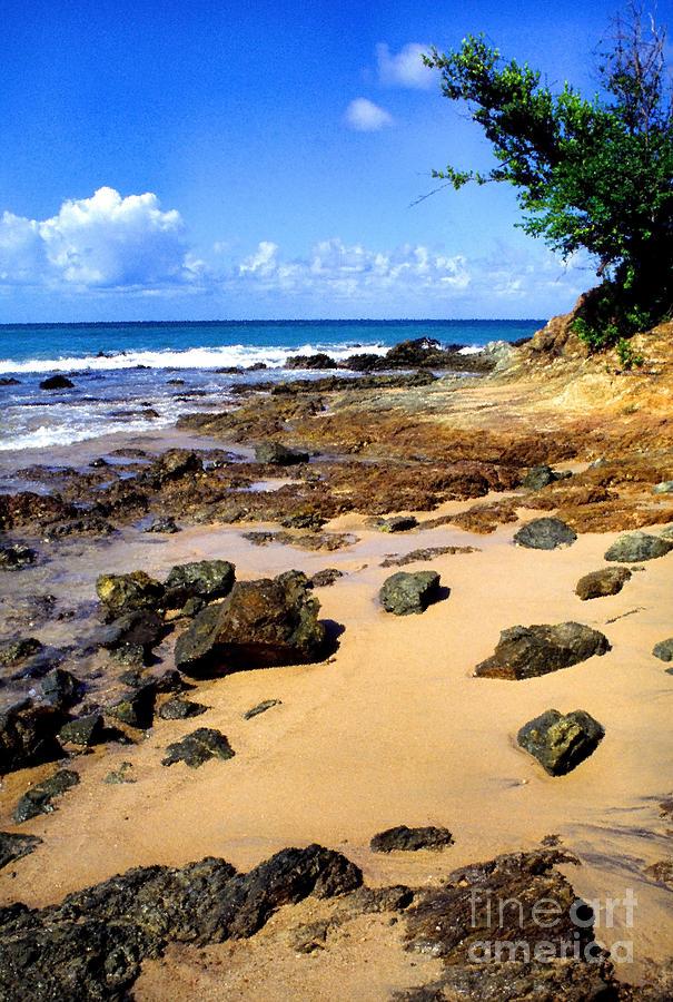 Beach Photograph - Vieques Beach by Thomas R Fletcher