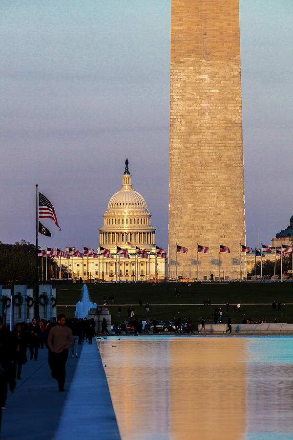 Vertical Photograph - Washington D.c. - Us Flags With Cropped by Panoramic Images