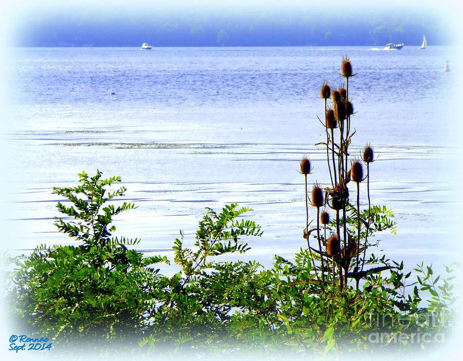 Waterscape Photograph - Waters Edge by Rennae Christman