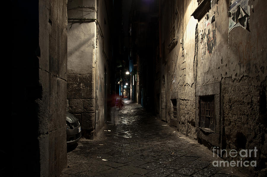 Naples Photograph - Who Goes There by Marion Galt