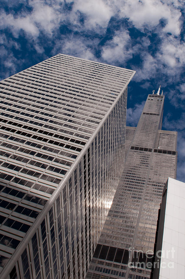 Chicago Downtown Photograph - Willis Tower by Dejan Jovanovic