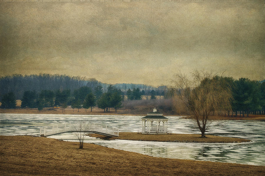 Willow Lake Photograph - Willow Lake  by Kathy Jennings