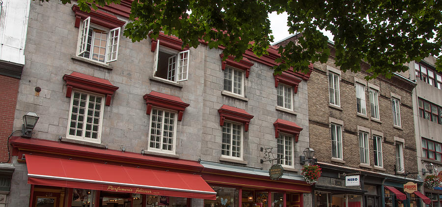 Landscape Photograph - Windows Of Quebec City  by Rosemary Legge