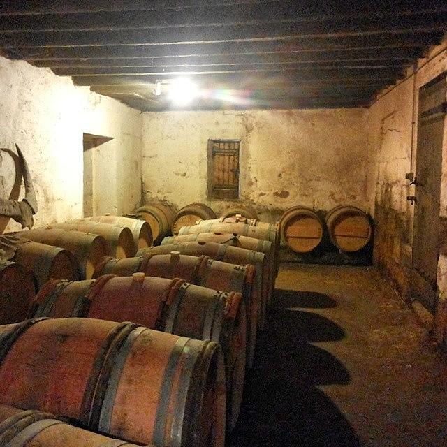 French Photograph - Wine Cellar by Georgia Fowler
