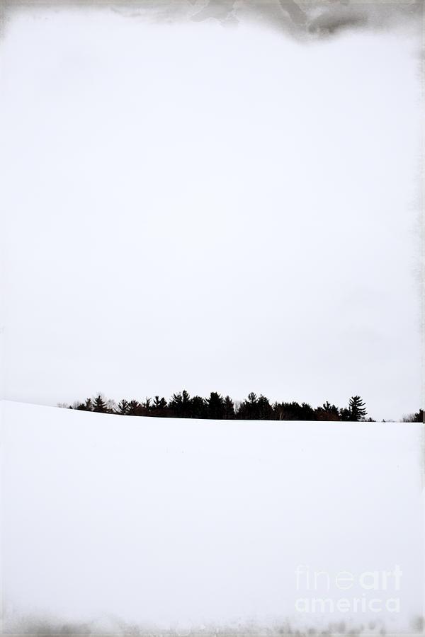Winter Photograph - Winter Minimalism by Edward Fielding