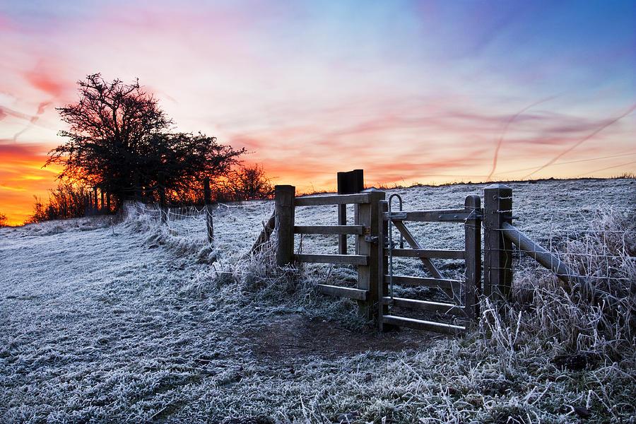 Winter Pyrography - Winter Sunrise by Graham Custance