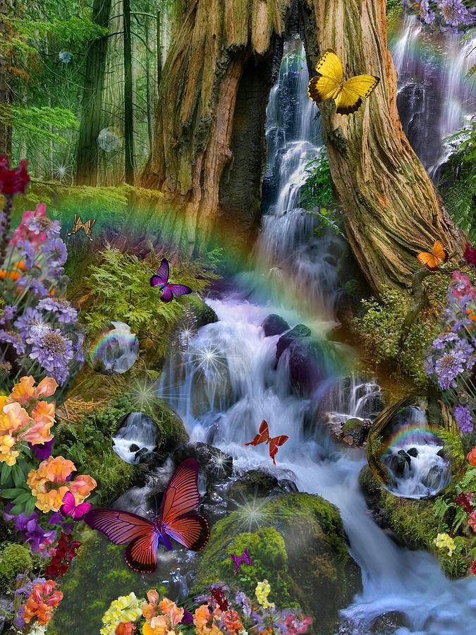 Alixandra Mullins Photograph - Woodland Forest Fairyland by Alixandra Mullins