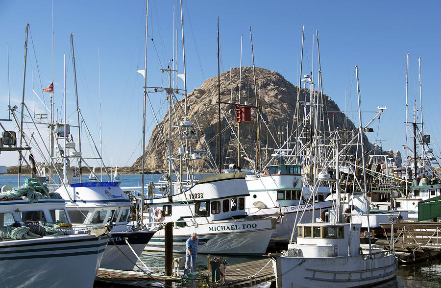 Barbara Snyder Photograph - Working Dock At Morro Bay 2 by Barbara Snyder