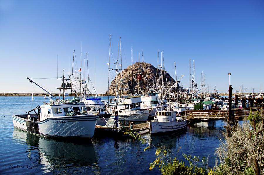 Working Dock At Morro Bay Photograph