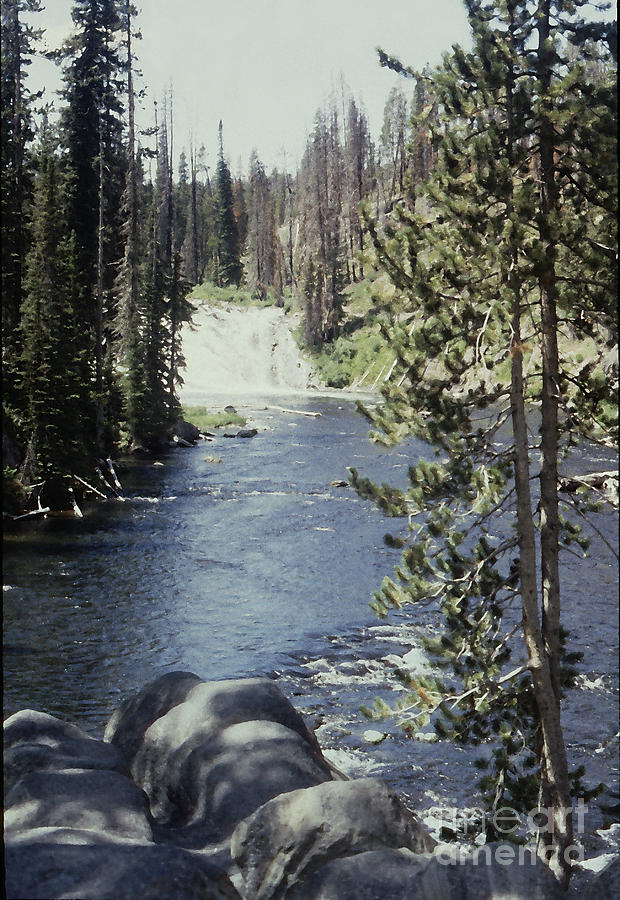 Nature Photograph - Wyoming Stream by Adeline Byford