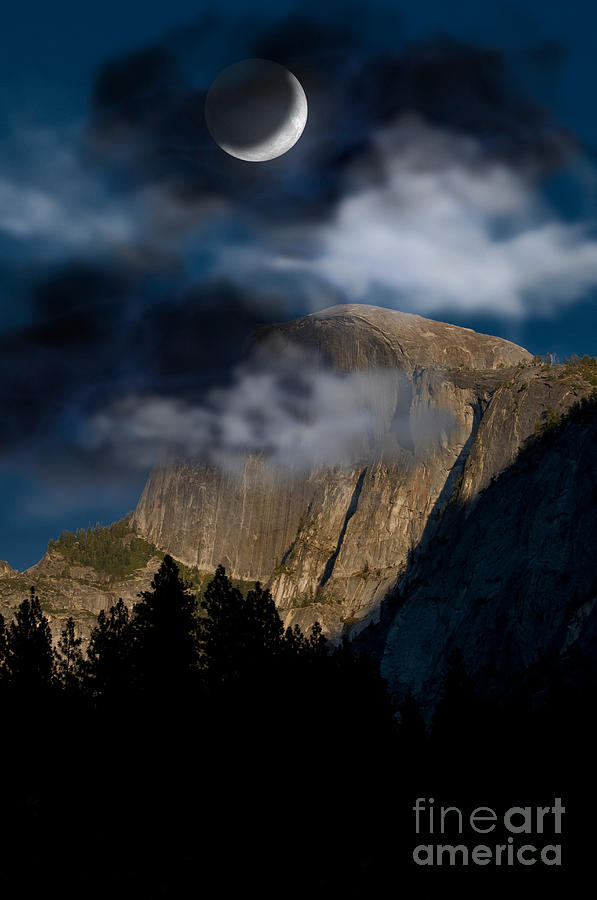 Yosemite Photograph - Yosemite National Park by Mark Newman