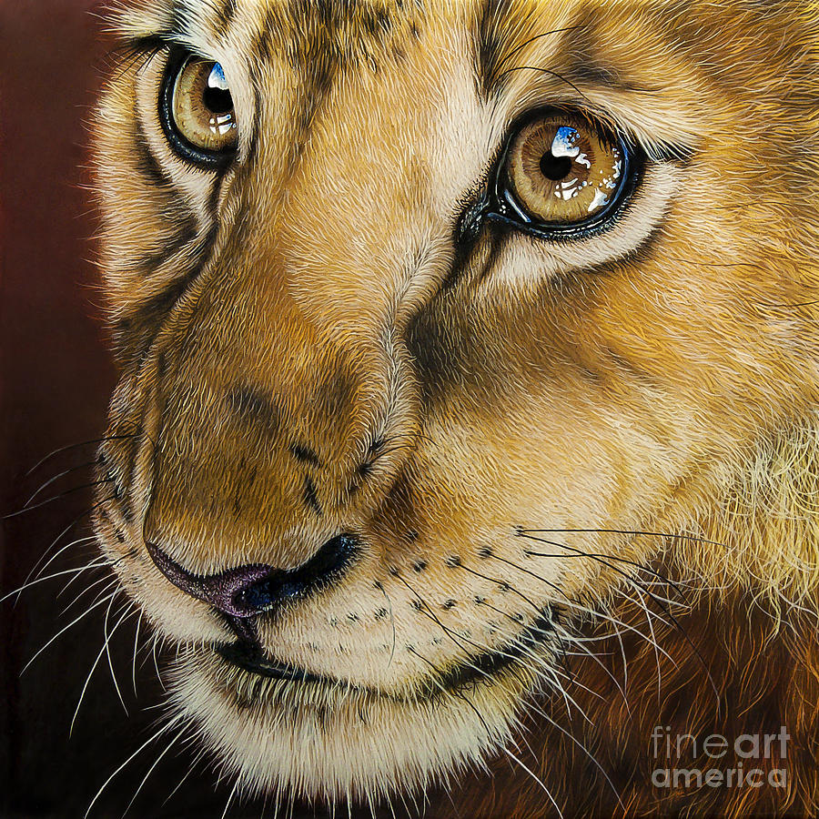 Lion Painting - Young Lion by Jurek Zamoyski