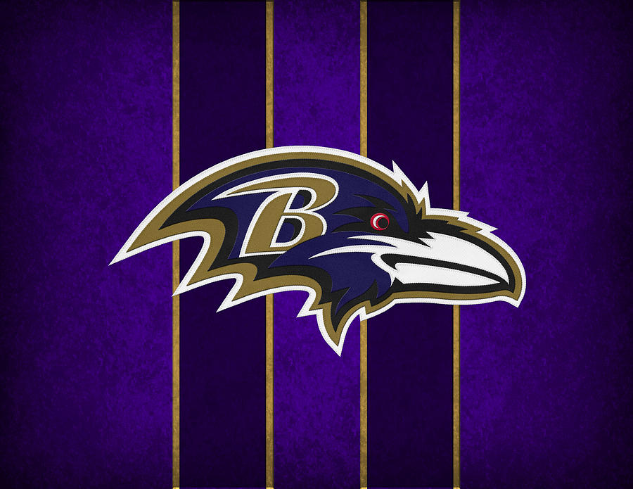 Ravens Photograph - Baltimore Ravens by Joe Hamilton