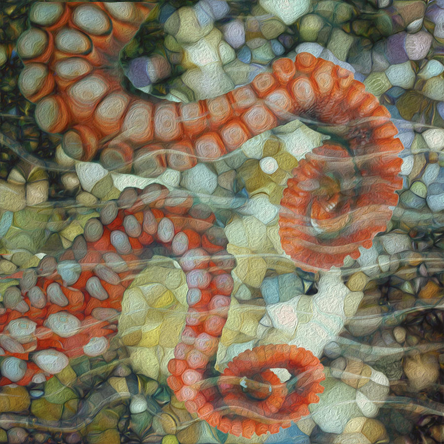 Octopus Painting - Beneath The Waves Series by Jack Zulli