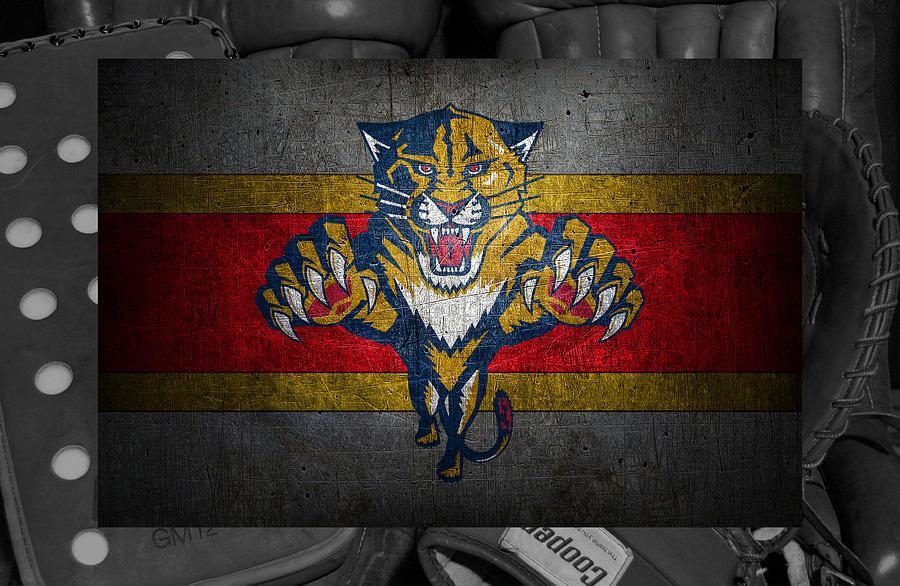 Panthers Photograph - Florida Panthers by Joe Hamilton