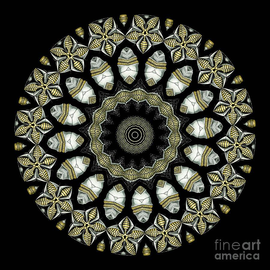 Ernst Haeckel Photograph - Kaleidoscope Ernst Haeckl Sea Life Series by Amy Cicconi