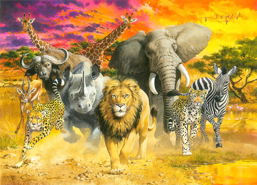 Africas Finest Painting by MGL Meiklejohn Graphics Licensing