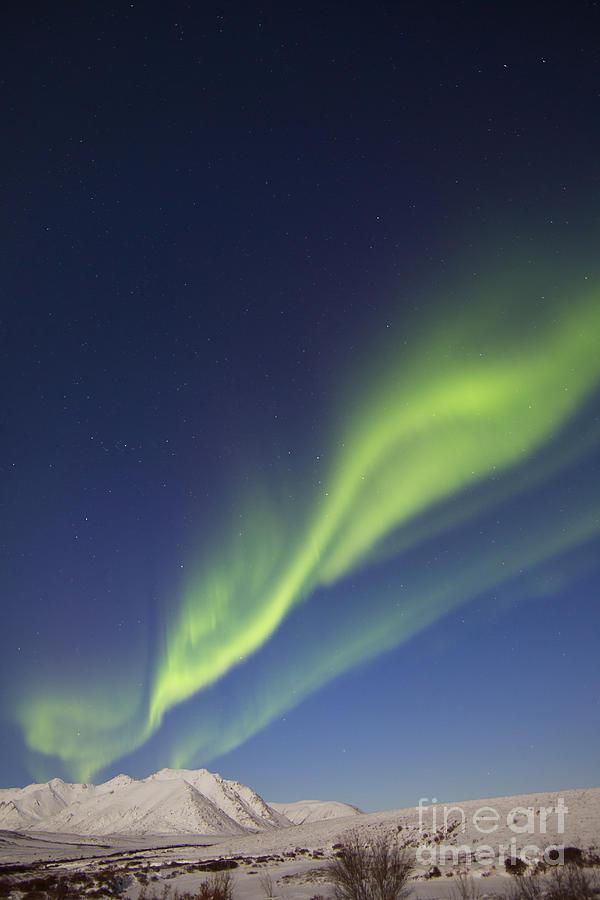 Vertical Photograph - Aurora Borealis With Moonlight by Joseph Bradley