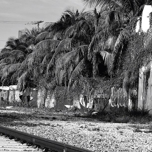 Love Photograph - Behind Miamis Glamorous Skyline 11 by Joel Lopez