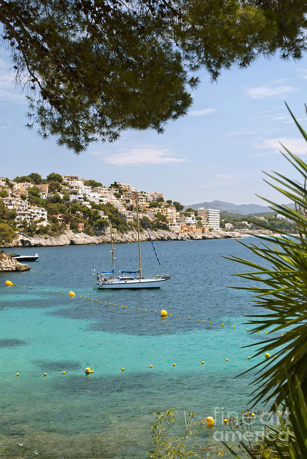 Balearic Photograph - Majorca by Design Windmill