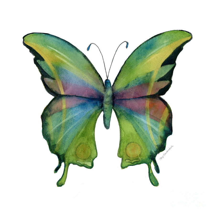 Prism Painting - 11 Prism Butterfly by Amy Kirkpatrick