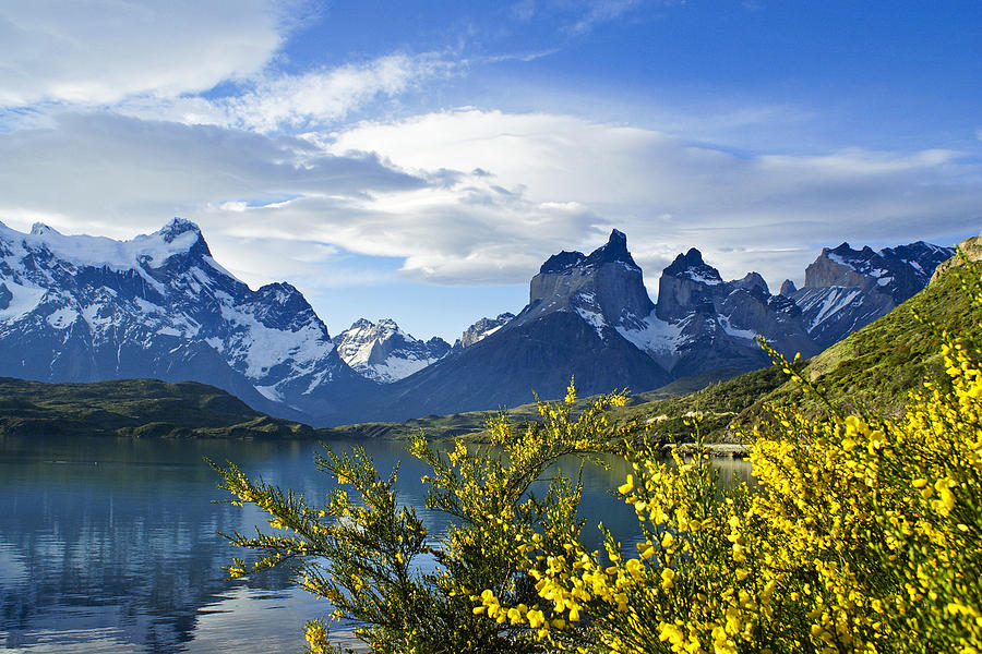 Patagonia Photograph - Springtime In Torres Del Paine by Michele Burgess