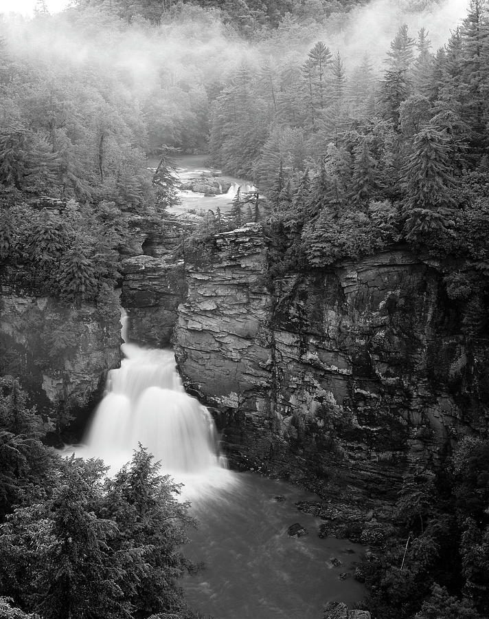 Adam Jones Photograph - USA, North Carolina, Pisgah National by Adam Jones