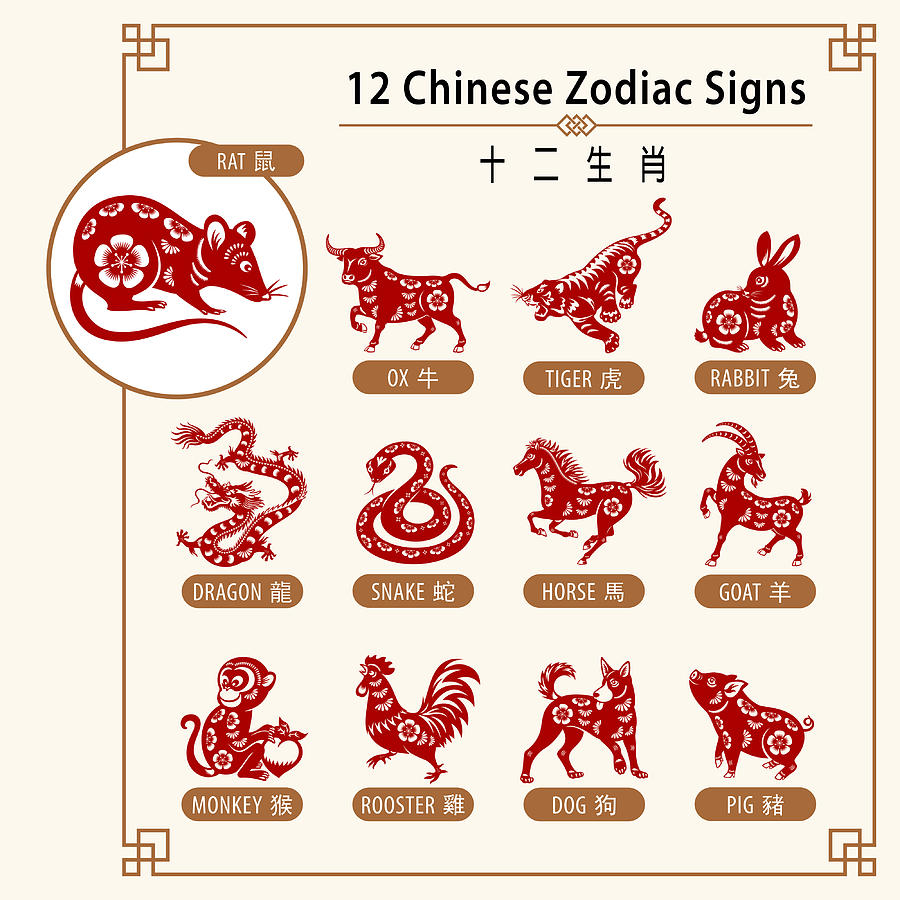 12 Chinese Zodiac Signs Drawing by Exxorian