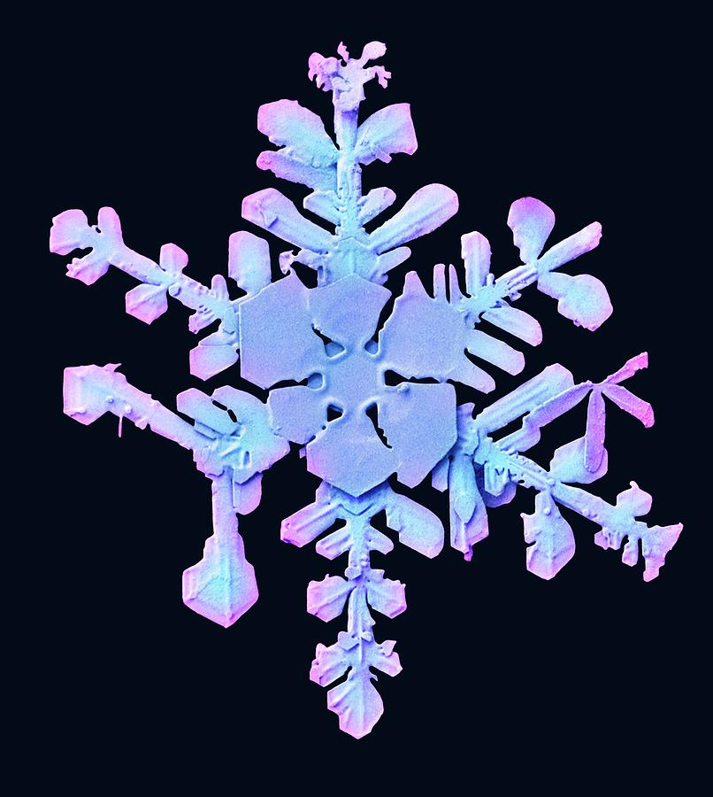Blue Photograph - Snowflake by Ars/us Dept Of Agriculture