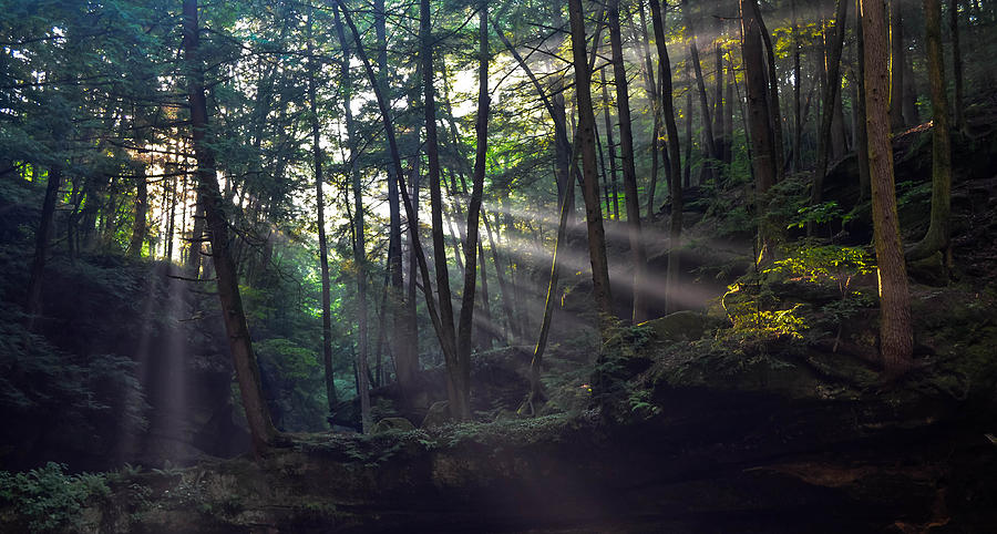Backlight Photograph - Old Mans Cave by Brian Stevens