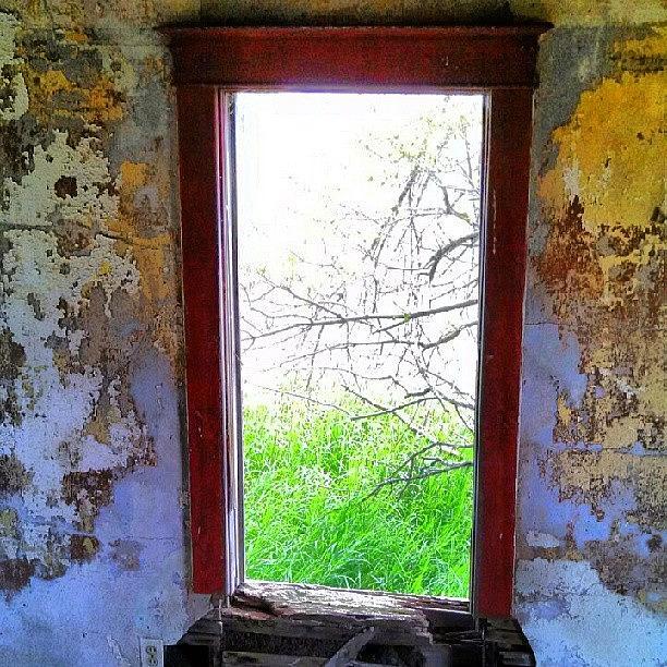 Window Photograph - Instagram Photo by Aaron Kremer