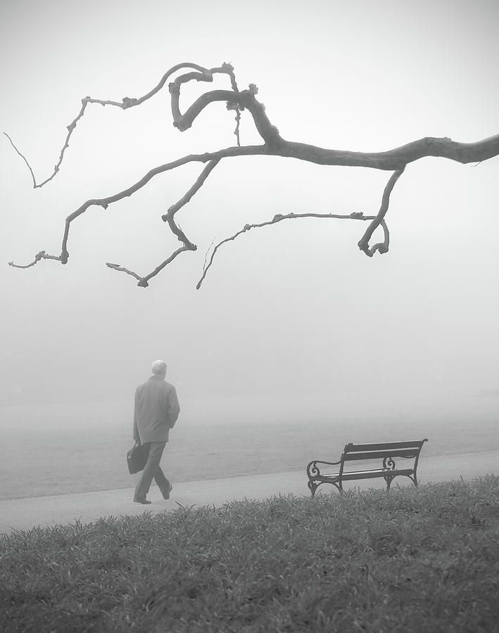 Bench Photograph - Untitled 14 by Anna Niemiec