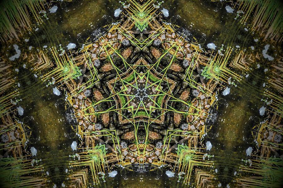 Kaleidoscope Photograph - Kaleidoscope by Joe Oliver