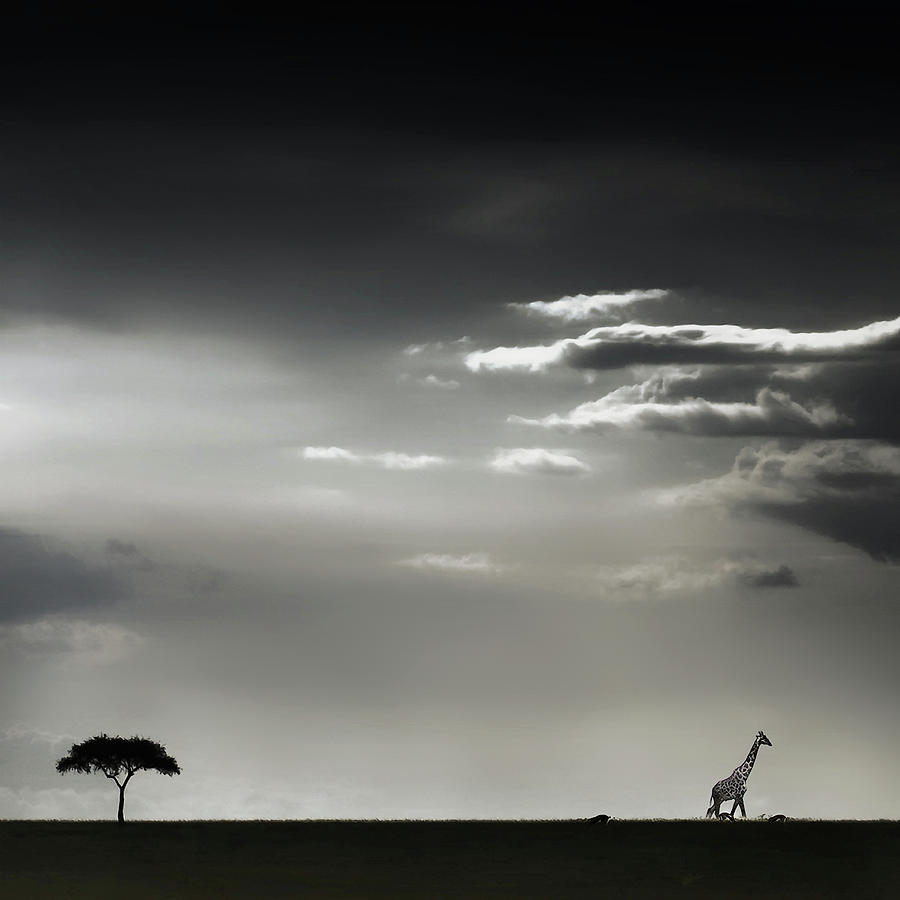Kenya Photograph - 15 Minutes Of Happiness by Piet Flour