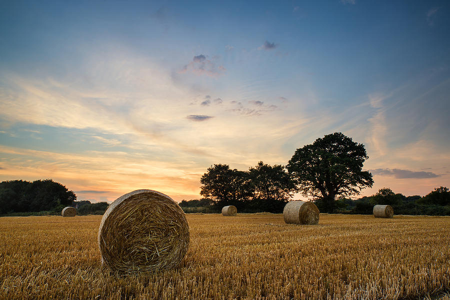Artistic Photograph - Stunning Summer Landscape Of Hay Bales In Field At Sunset by Matthew Gibson