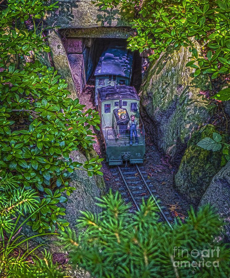 Garden Photograph - Untitled by Jon Munson II