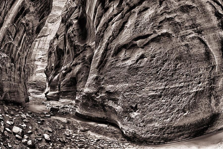 America Photograph - 1500 Feet Tall Bn by Juan Carlos Diaz Parra