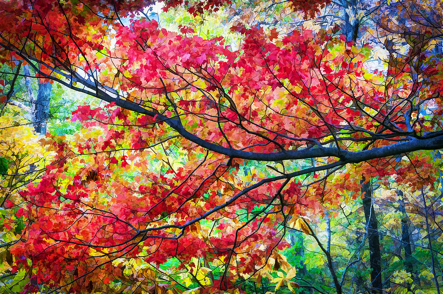Fall Foliage Great Smoky Mountains Painted Photograph By
