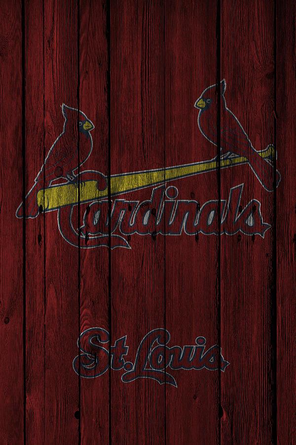 Cardinals Photograph - St Louis Cardinals by Joe Hamilton