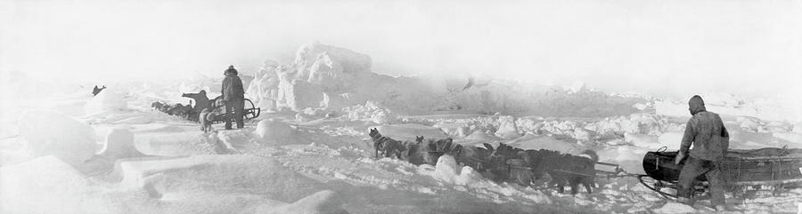 Dog Photograph - 1903-5 Ziegler Arctic Expedition by Library Of Congress/science Photo Library