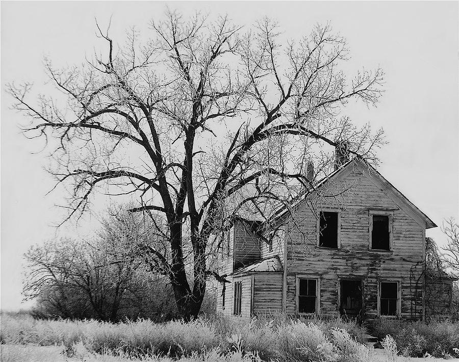 1930s abandoned farm house near aberdeen south dakota 1965 black and white photograph by david lee