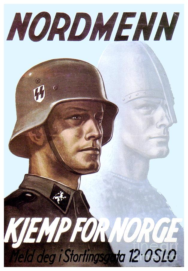 the nazi state and german society moeller