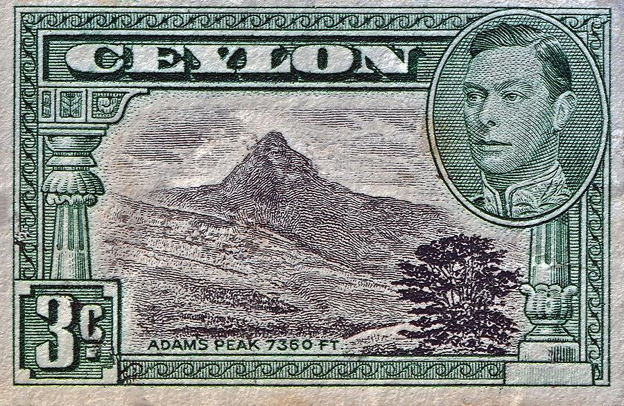 1946 Ceylon Sri Lanka Stamp Photograph By Bill Owen