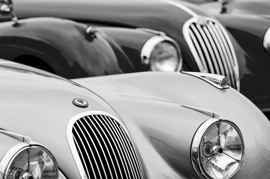 Black And White Photograph - 1950 Jaguar Xk120 Roadster Grille 2 by Jill Reger